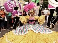 63caribana-parade-14