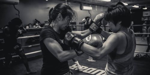 Fitset boxing