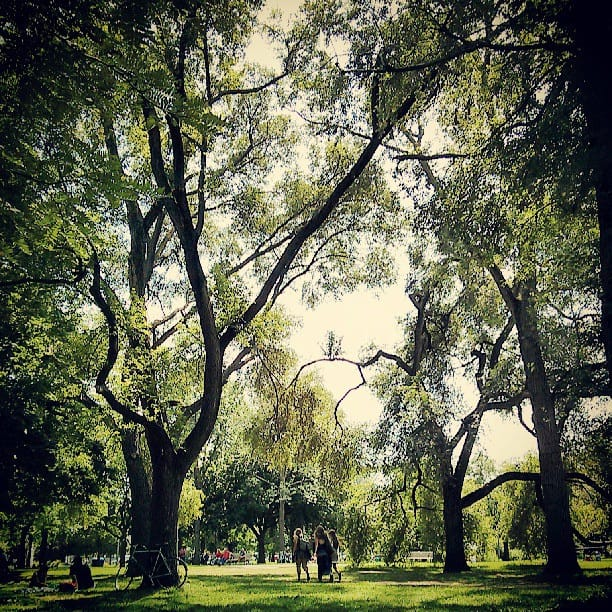 Clean Up Your Neighbourhood Park This Weekend