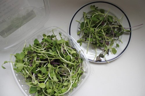 Food Fads in Review: Microgreens