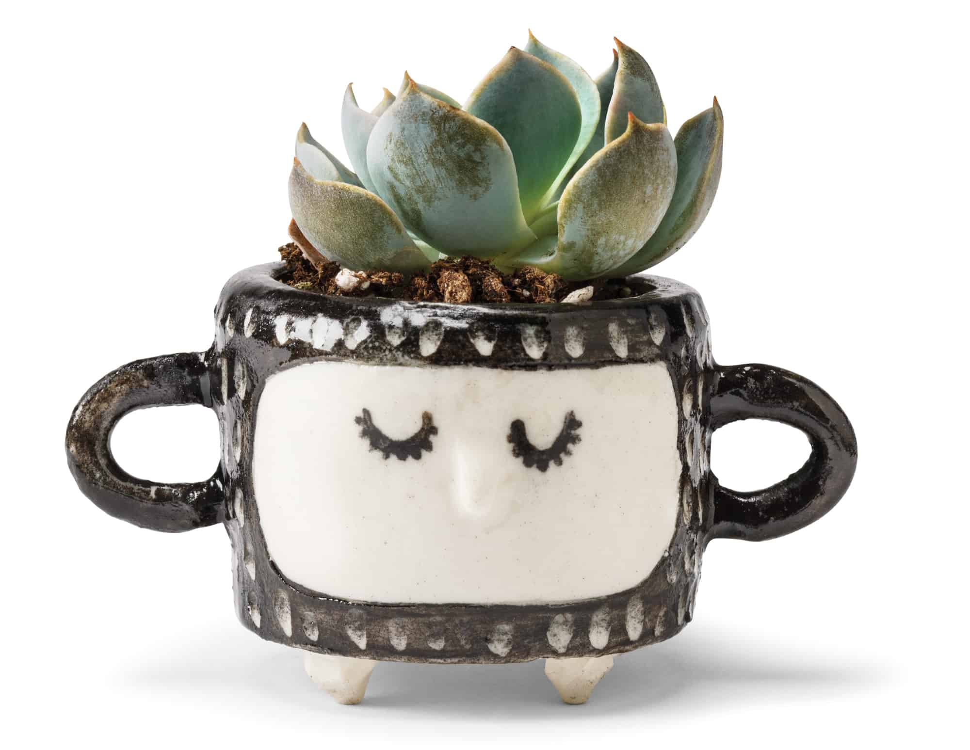 Mini ceramic planter $35 by Janet Hinkle, Hinkleville