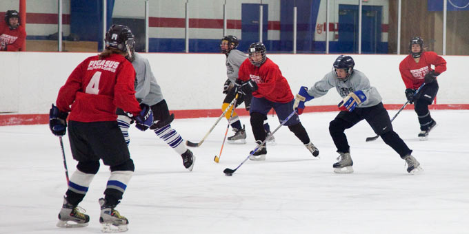 essays history of hockey in canada