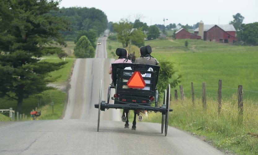 Assured, Amish maid sex stories consider