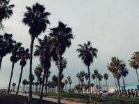 61california-street-style