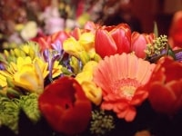hottest-flower-bouquet-for-rethink-24